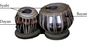 Étude des propriétés mécaniques et vibratoires du Syahi